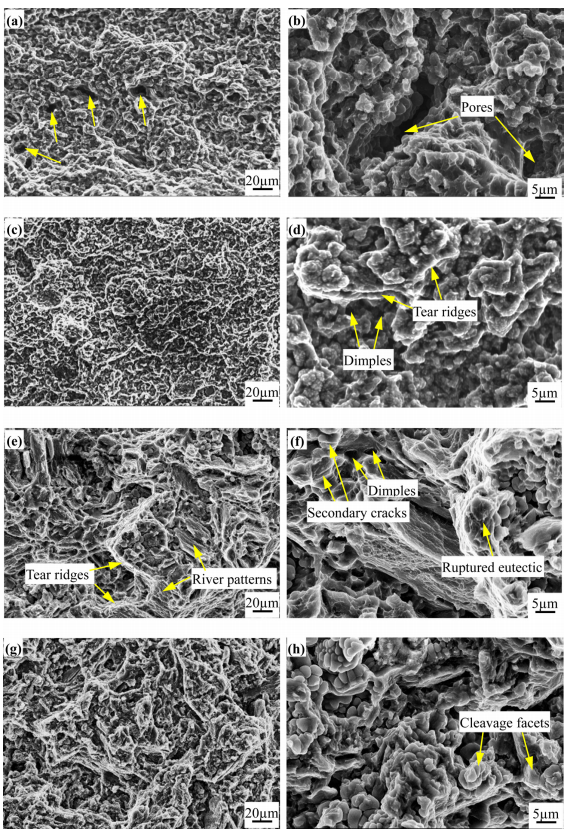 Fig. 17. SEM fractographs of the AZ91D Mg-alloy tensile parts: (a) low magnification, HPDC; (b) high magnification, HPDC; (c) low magnification, FCS Rheo-HPDC; (d) high magnification, FCS Rheo-HPDC; (e) low magnification, FCS Rheo-HPDC + T4 treatment; (f) high magnification, FCS Rheo-HPDC + T4 treatment; (g) low magnification, FCS Rheo-HPDC + T6 treatment and (h) high magnification, FCS Rheo-HPDC + T6 treatment.