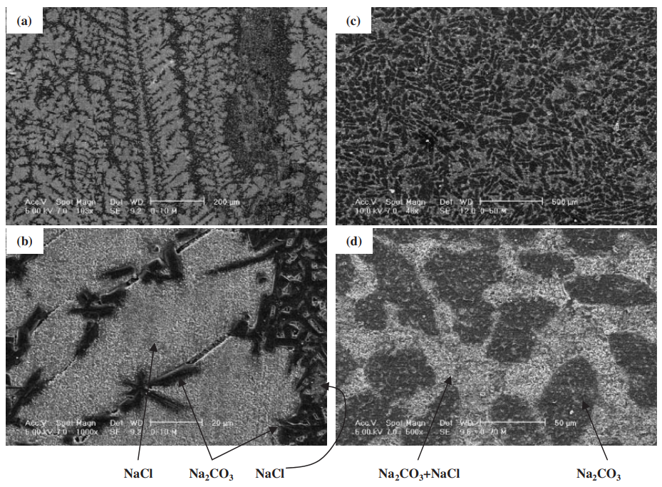 Fig. 7 The scanning electron microscope (SEM) images of solidified structure. (a) and (b) : NaCl–10 mol%Na2CO3. (c) and (d) : NaCl– 70 mol%Na2CO3.