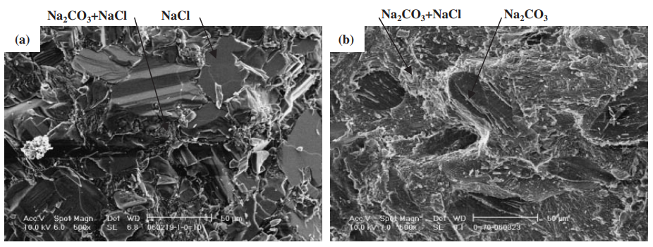 Fig. 9 The scanning electron microscope (SEM) images of broken surface. (a) : NaCl–10 mol%Na2CO3. (b) : NaCl–70 mol%Na2CO3.
