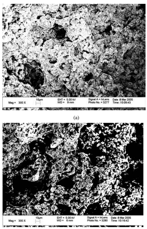 Figure 5.—(a) A typical abruption surface of the fusion slurry velocity 90 m/s and under the condition A3C3D2. (b) A typical abruption surface of the fusion slurry velocity 60 m/s and under the condition A3C3D2.